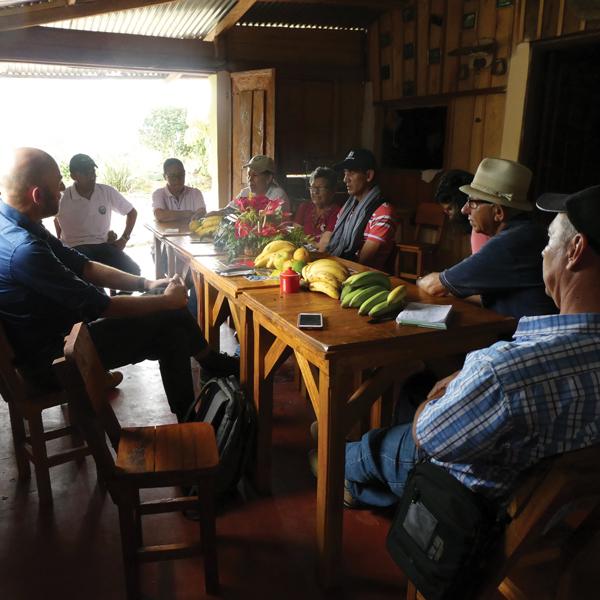 San Isidro; diversidad y organización
